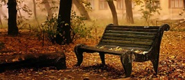 Autumn-wallpaper-autumn-9444937-1280-1024