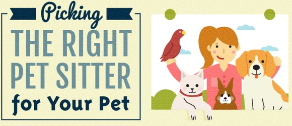 [INFOGRAPHIC] Everything You Need to Know About Hiring Pet Sitters & The Business of Pet Sitting