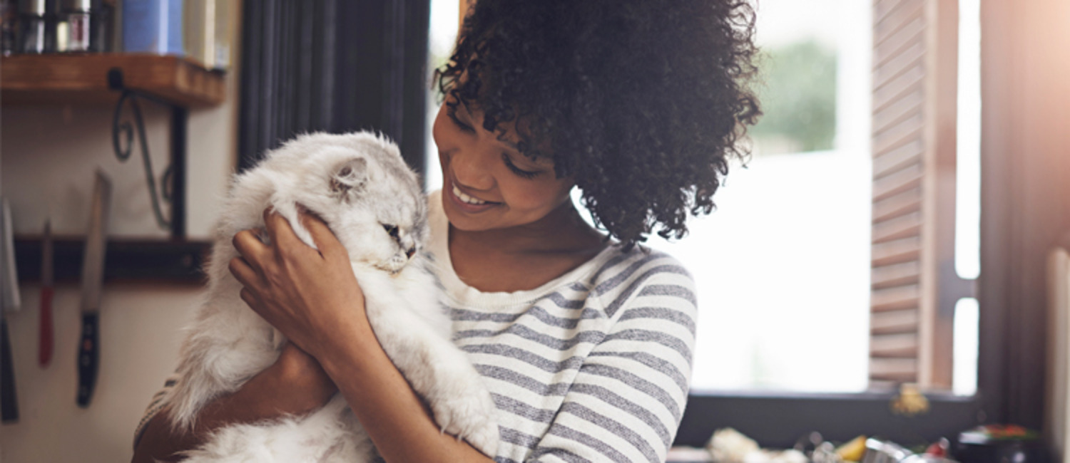 What Experience Should I Look for in a Pet Sitter?