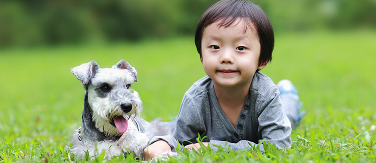 8 Tips for Babysitting Kids and Dogs