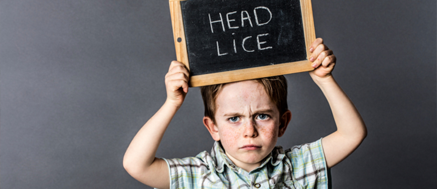 How to Prevent & Cure Head Lice: Q & A with Expert Dawn Mucci
