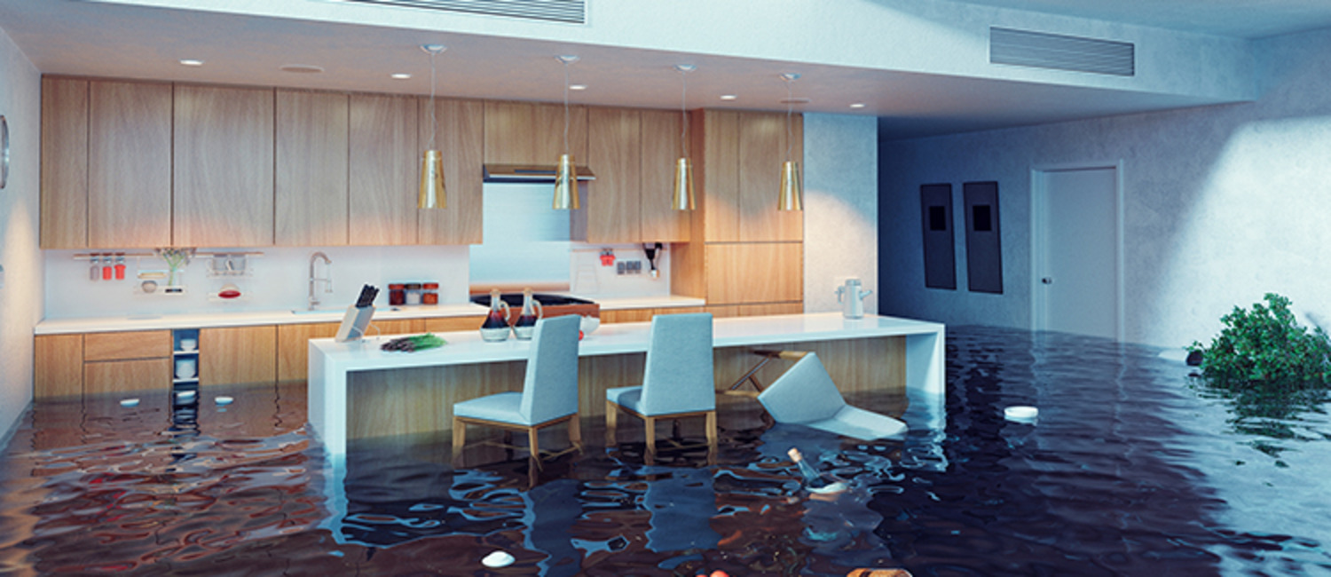 5 Tips for Handling Emergency Situations When House Sitting